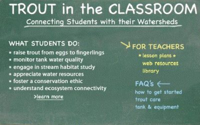Trout in the Classroom