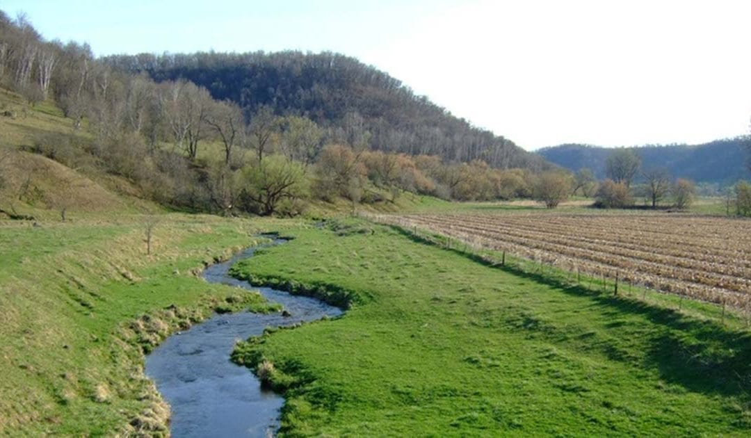 Stream Profile: West Fork of the Kickapoo River