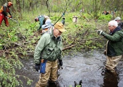 Bird Creek 2019 Habitat28
